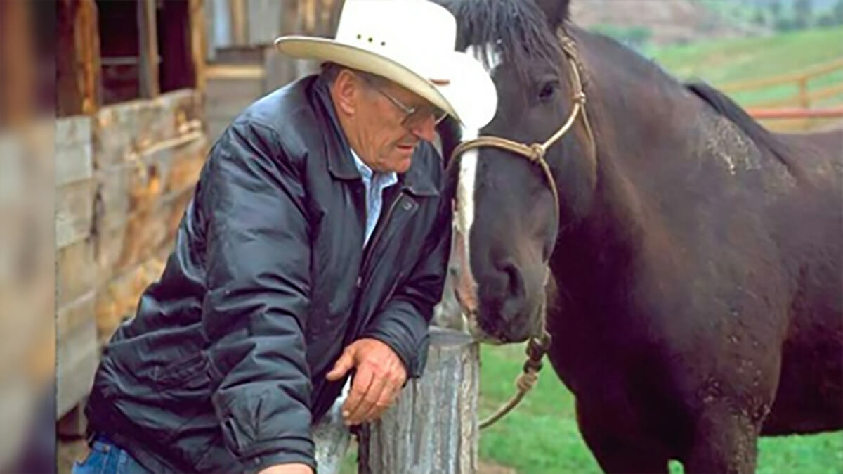 Image result for Remembering a cowboy and animal hero for his work to save wild horses